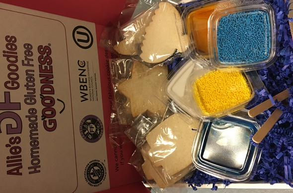 Chanukah Cookie Decorating Kit