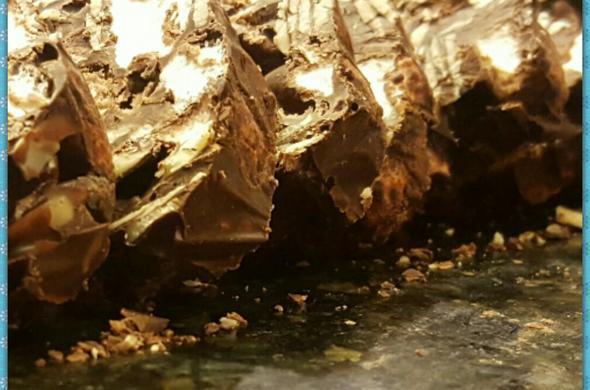 Chocolate marshmallow log
