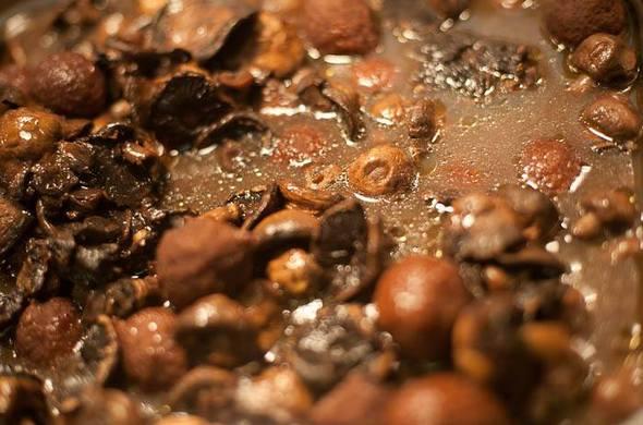 Kibbe Mushrooms