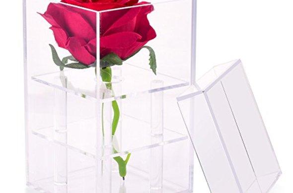 Acrylic Flower Box  - 1 Hole