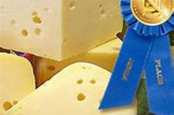 Swiss Cheese (Passover)