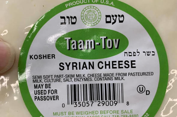 Syrian Cheese